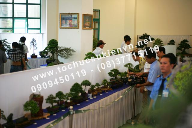 tư vấn tổ chức triển lãm bonsai TPHCM 2