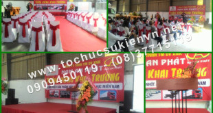 Tổ chức lễ khai trương Nam An Phát
