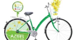 tổ chức roadshow xe đạp tại ngàn thông