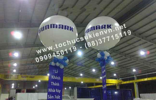 bán và cho thuê khinh khí cầu 9