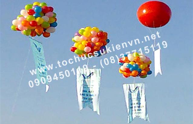 bán và cho thuê khinh khí cầu 10